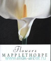 Mapplethorpe. Flowers