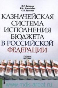 Казначейская система исполнения бюджета в Российской Федерации : учебное пособие